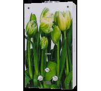 Газовая колонка Генберг 210.01 Тюльпаны